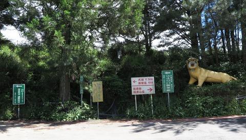 26 福寿山製茶工場への道